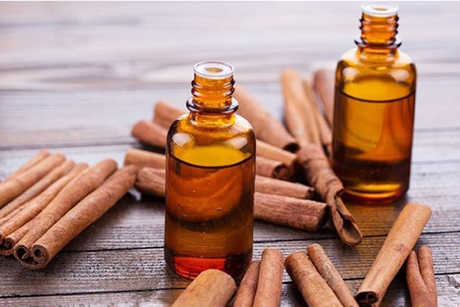 Cinnamon Essential Oil.jpg